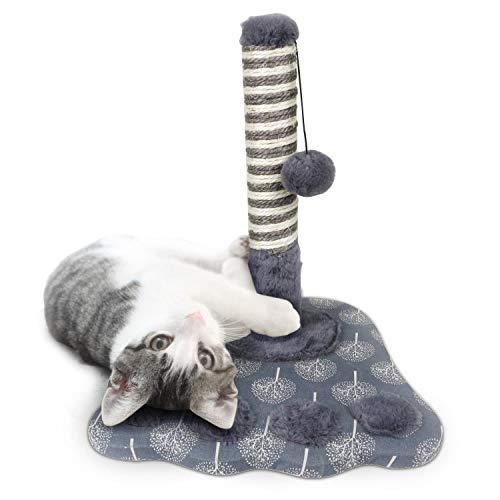 Nobleza- kratzbaum klein mit kratzender Pfosten-Sisal-Kratze kratzsäule Kätzchen Spielturm mit Hängespielzeug Kleine Katze Kletteraktivitätszentrum, Pfotenform, Grau, 36 * 36 * 40cm