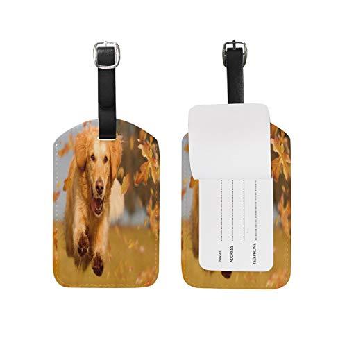 Dog Golden Retriever Puppy Kofferanhänger Travel Bag Tag Suitcase 2 Piece 89tAGS3498 -