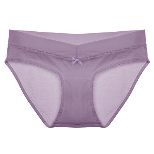 Intimate Portal Femme le Meilleur Ajustement Sous le ventre Pack multiple de Petites Culottes Hipster Cove 3-Lot