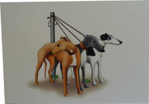 greyhounds-piombo-biglietti-con-buste-confezione-da-10-pezzi