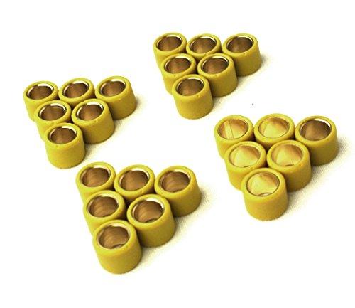 Variomatik Gewichte Abstimmset Variorollen 15x12mm 4,0gr - 4,7gr - 5,2gr - 5,8gr für Aerox, Nitro, SR50, Jog, Neos, Gulliver, Rally