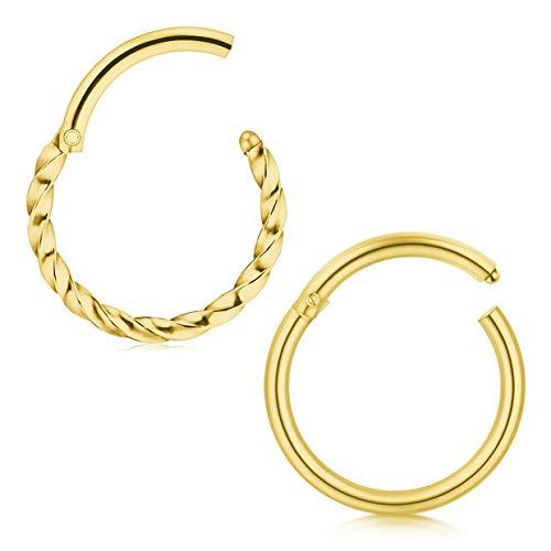 Briana Williams 2stk Nasenring Clicker Septum Nasenpiercing Edelstahl 8mm Segment Piercing Nase Lippe Ohr Ring - Ohrstecker Ringe Gold-nase