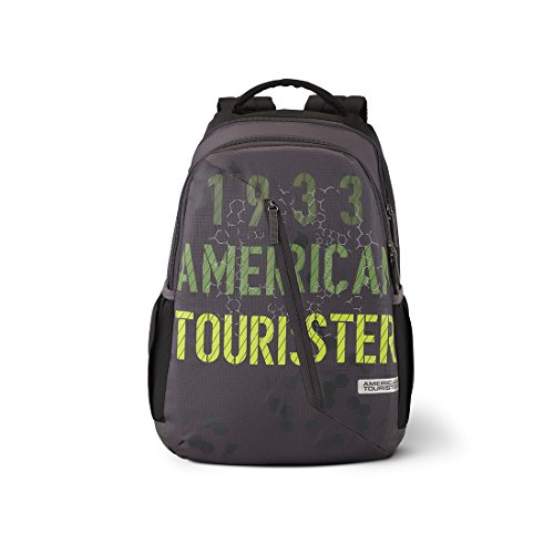 American Tourister Dune 29 Ltrs Grey Casual Backpack (Fi1 (0) 08 001)