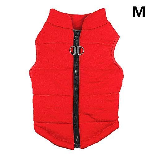 Alexsix Haustier Hemden Super Süß Welpe Zipper T-Shirt Hunde Winter Weste Kostüm Katze Mantel \ N - Rot, M (Themed Kostüm M)