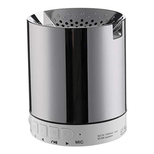 ToDIDAF Tragbarer Drahtloser Bluetooth-Lautsprecher, Mini-Musik-Player, FM-Radio + USB-Funktion, Schnelles Laden und Langer Standby-Modus - Schwarz/Rot/Silber/Gold (Silber)