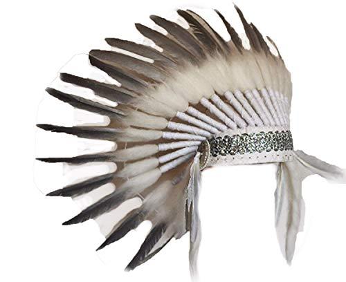 r Kopfschmuck mit Schwanenfedern mit Silberfarbe gemacht ()