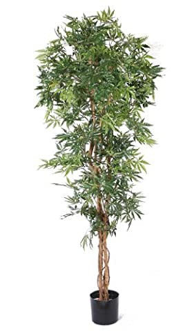 Artificial Acer Tree - Natural Green Maple Leaves and Real Wood Trunk. 1.65m high