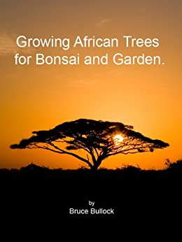 Growing African Trees for Bonsai and Garden (English Edition) von [Bullock, Bruce]