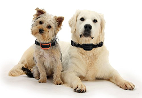 Anti-bell Hundehalsband Vibrationshundehalsband PetMania, OhneSchock, Harmlos und Human, Halsband für trainieren und gegen Bellen, 7 moderne verstellbare Stufen (Schwarz)