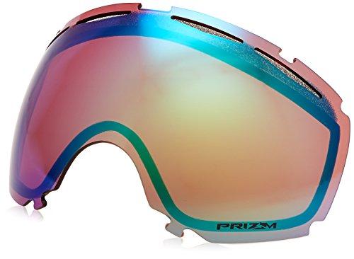Oakley Canopy Ersatz Ski/Snowboard Brillen Objektiv Einheitsgröße Prizm Jade Iridium