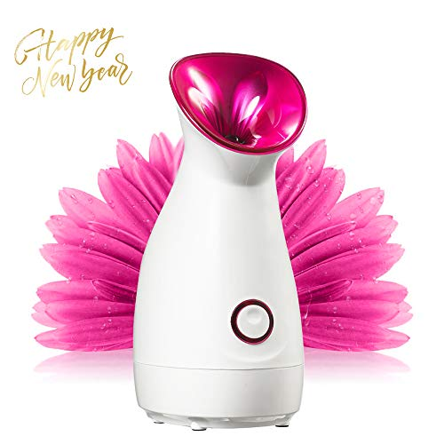 Gesichtssauna Gesichtsdampfer Dampfbad Gesicht, Fairycity Facial Steamer Professionelle Nano Ionic Gesicht Dampfgerät Home Luftbefeuchter für Gesichtspflege Porenreinigung