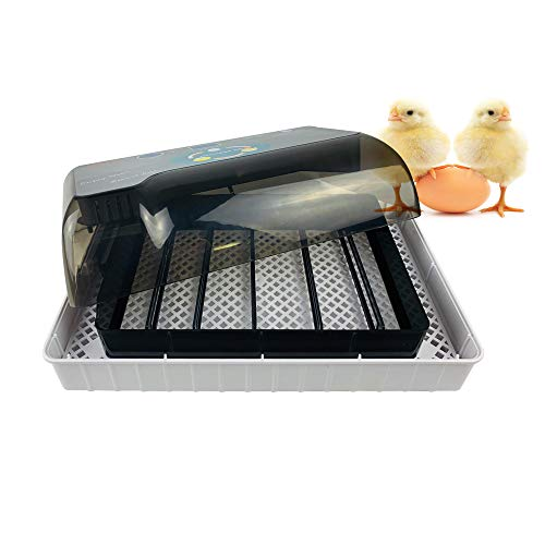 Xmagg® incubatrice, incubatrice automatica di uova, incubatore intelligente digitale con schermo led di temperatura e sensore di temperatura preciso per cova pulcini, anatre, oche, grilli (12 uova)