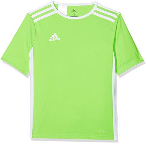 adidas Entrada 18 JSY Teamtrikot T Shirt Bambino Verde 11 12 anni