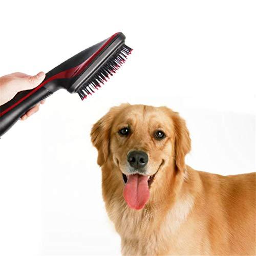 Dbtxwd 2 In 1 Haustier Trockner Elektrischer Haartrockner Lockenwickler Hunde Pflege Pinsel Kamm Und Trockner Zubehör Für Haustier Hund Tier