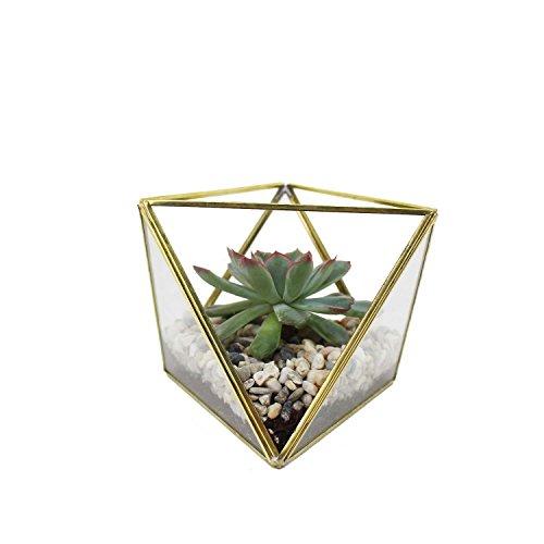 Geometrisches Terrarium, Geometrische Deko Glas Terrarium Mini Gewächshaus Dreiecke | Blumentopf | Pflanzgefäß Terrarium
