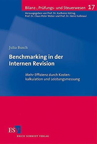 Benchmarking in der Internen Revision: Mehr Effizienz durch Kostenkalkulation und Leistungsmessung (Bilanz-, Prüfungs- und Steuerwesen, Band 17)