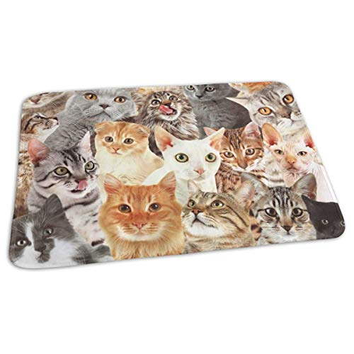 """Voxpkrs Baby Changing Pad Liners Cute Cat Collection Print Weiche Wickelauflage für Jungen Mädchen 25.5""""X 31.5"""""""