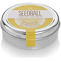 Bee Mix Seed Balls - 1000 Native Bee-Friendly Wildflower Seeds Including Foxglove, Cornflower, Red Clover, Birdsfoot, Wild Marjoram and Viper's-Bugloss. Easy To Use & Grow