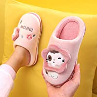 Nikai Breathable memory sponge slippers,Cartoon cute girls boys autumn and winter warm baby princess kids cotton slippers