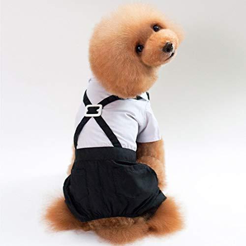 DFHJSXDFRGHXFGH-ES Traje de Mascota Vestido de Perro Traje de Caballero Vestido de...