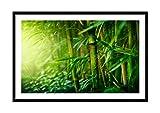ARTTOR Bild im schwarzen Holzrahmen - Bild im Rahmen - Bild auf Leinwand - Leinwandbilder - Breite: 120cm, Höhe: 80cm - Bildnummer 3558 - zum Aufhängen bereit - Bilder - Kunstdruck - F1BAA120x80-3558