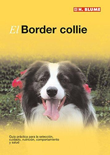 El Border collie (Mascotas)