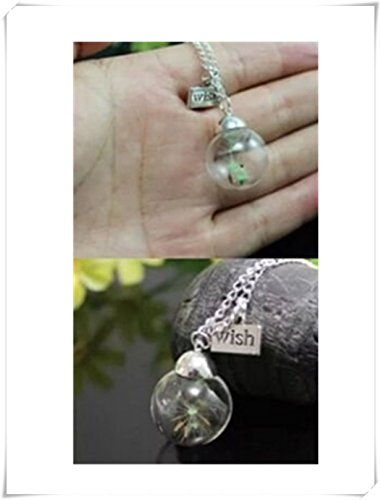 Glow in the Dark Luminous Pusteblume Glas Globe Anhänger Halskette Pullover Kette