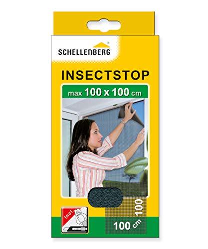 Schellenberg 50711 Insektenschutz ohne Bohren Fliegengitter für Fenster, Schutz vor Mücken, Fliegen, Insekten und Ungeziefer, Maße: 100 x 100 cm, selbstklebendes Klettband