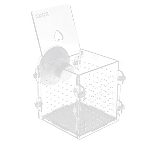 Baoblaze Aquarium Fisch Züchter Brutplatz Zucht Tanks Hängende Inkubator Isolation Box - Loch - Typ
