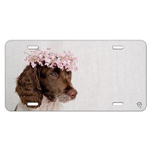 Graphics and More Springer Spaniel Dog Blume Blossom Tiara Neuheit Metall Vanity Tag License Plate (Springer Platte Spaniel)