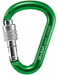 Salewa Hms Screw G2 - Mosquetón, color verde, talla S