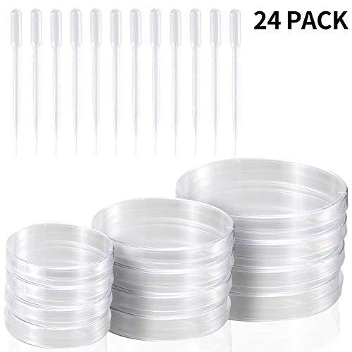 Petri juego de platos con tapas