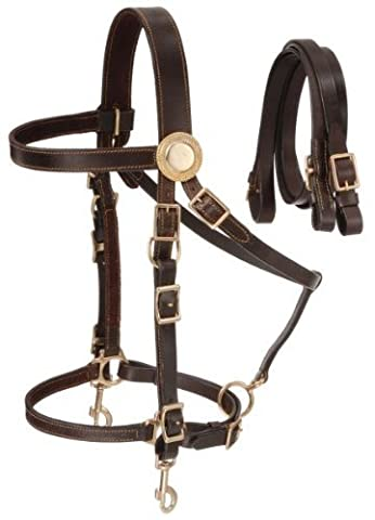 Australian OutRider Supreme Leather Halter Bridle - Brown by Australian Outrider