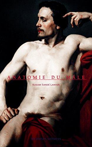 Couverture du livre Anatomie du mâle: histoires pornographiques (littérature transgressive - LGBT)