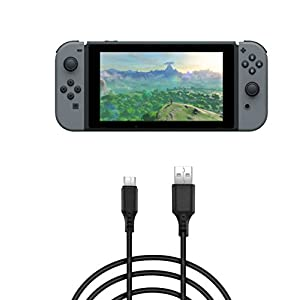 Gogoings Charging Cable for Nintendo Switch-USB Type C to Type A Cable-3 Meter