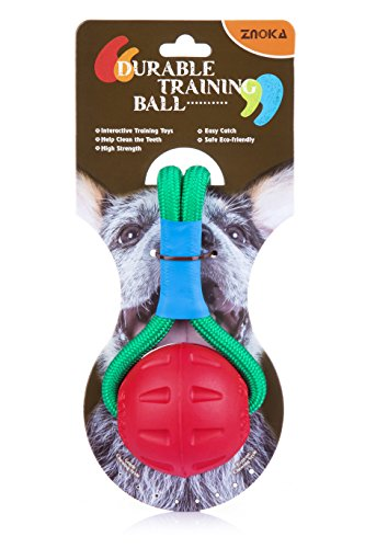 ZNOKA Hundespielzeug Ball am Seil EVA Schaum Material Interaktive Ausbildung für Hund