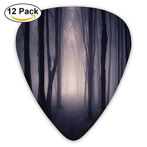 ep In Forest With Fog Halloween Creepy Twisted Branches Guitar Picks 12/Pack Set ()
