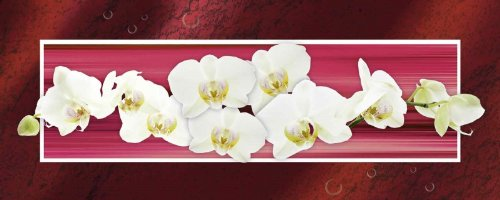 artland-glas-bild-wandbild-w-l-orchideen-rot-botanik-blumen-orchidee-digitale-kunst-rot