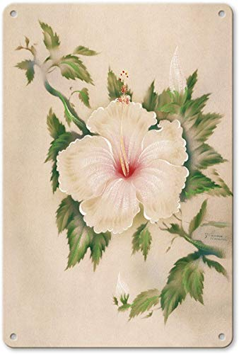 Aluminum Sign, Metal Sign, Vintage Tin Sign - Hawaiian White Hibiscus (Pua Aloalo) by Tip Freeman Retro Sign ()