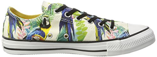 Converse - Converse All Star Chuck Taylor Ox Amazon Green Scarpe Sportive Donna 152751C Multicolore