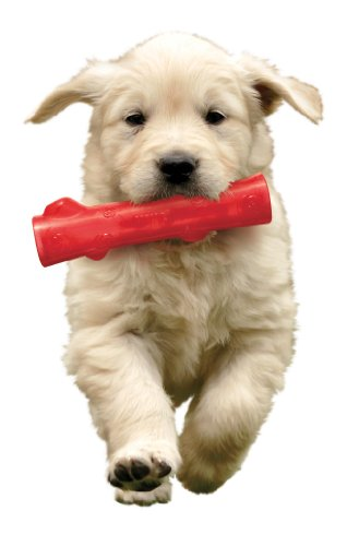 KONG-Squeezz-Stick-Dog-Toy-Medium-Color-may-vary