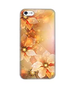 PickPattern Back Cover for Apple iPhone 5s (Matte)