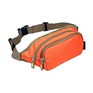 41CUEwq3lrL. SS300  - Waterproof Pouch Zipper Pockets Fanny Pack Waist Bag for Hiking/Sports - Orange