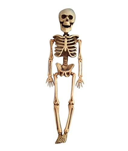h Halloween Dekoration Horror Deko Garten Menschliches Skelett Modell Lebensgroße Figuren für Draussen 40CM (Lebensgroße Halloween-dekoration)