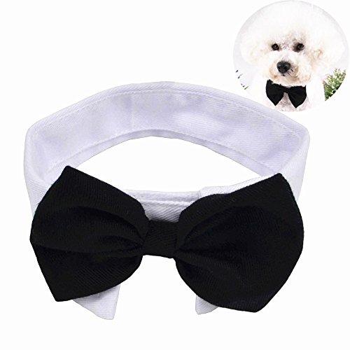 Hunde Große Für Kostüm Niedliche - Yumsum - Halsband mit Fliege für Haustier, für Hund und Katze, mit einstellbarem Klettverschluss, weißer Kragen