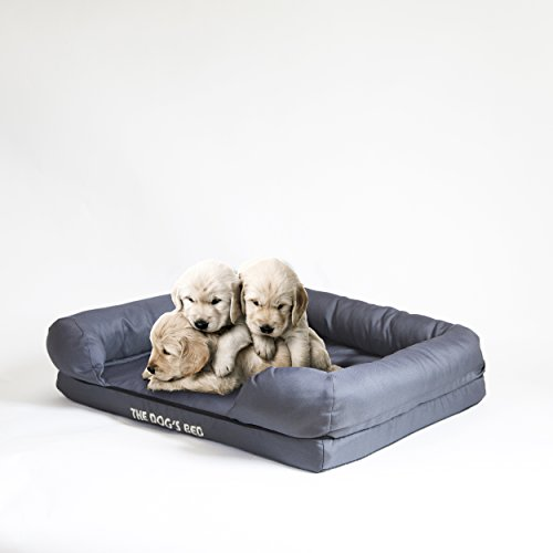 The-Dogs-cama-con-memoria