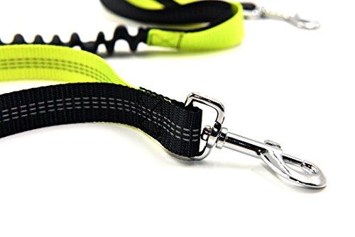 Pugga® NEUERÖFFNUNGSANGEBOTE elastische und flexible Jogging Hundeleine, haltbarer Doppel Dual Griff Bungee Gummi Leine, reflektierend, 1,2 m bis zu 2m dehnbar, verstellbarer Hüftgurt (Passend bis zu 1 m Taille) aus reißfestem Nylon für Hunde bis max. 45 kg, Farbe: grau und grün -