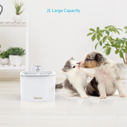 Zoom IMG-2 dadypet fontanella per gatti fontana