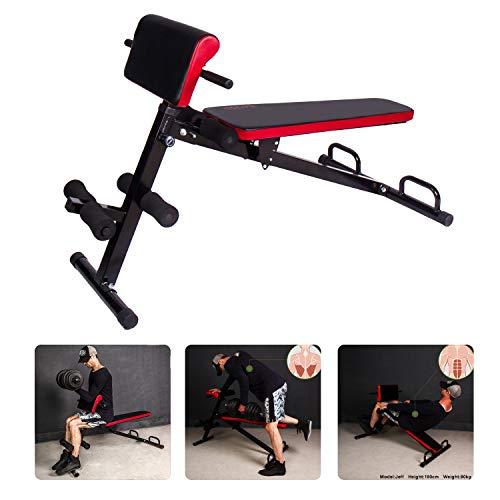CCLIFE Roman Chair Hantelbank klappbar verstellbar Rückenstrecker Hyperextension Bizeps Trainingsbank Schrägbank, Farbe:RKTN002