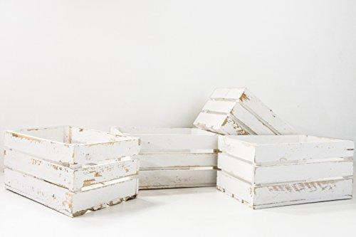Set de 4 Cajas de Fruta Sam